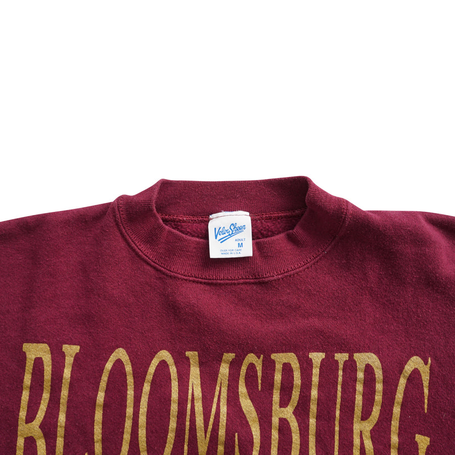 Vintage 90s Bloomsburg University Sweater