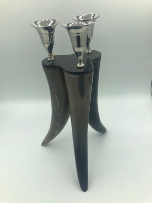 Polished Bull Horn Candle Holder