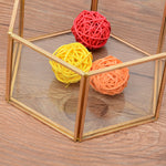 New Nordic Hexagonal Transparent Glass Flower Room, Jewelry Box