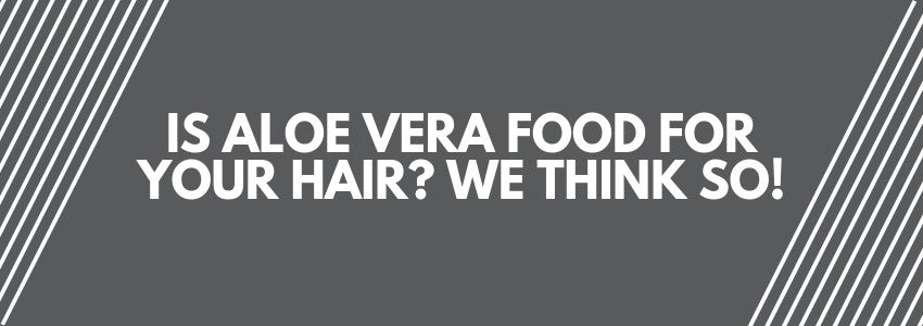 Is Aloe Vera Food For Your Hair? We Think So!