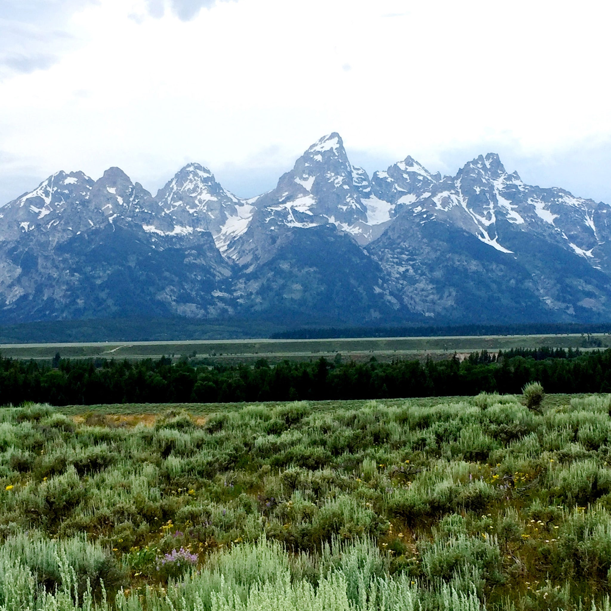 Mimi-So-Jackson-Collection-Inspiration-Teton-Mountains