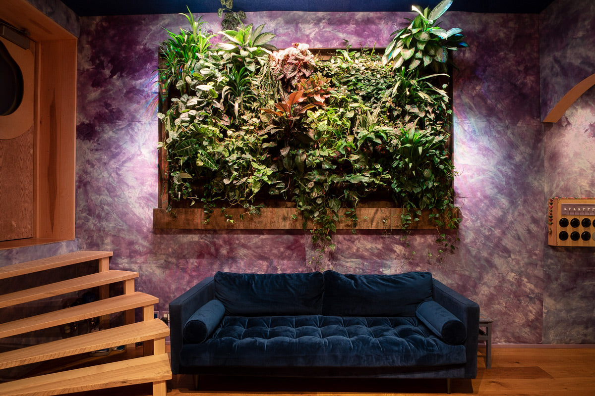 Green Wall using Wooly Pockets at Electric Garden Recording Studio, Brooklyn