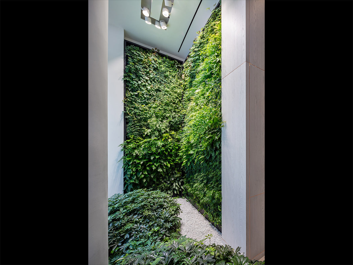 Biophilic Design Brooklyn