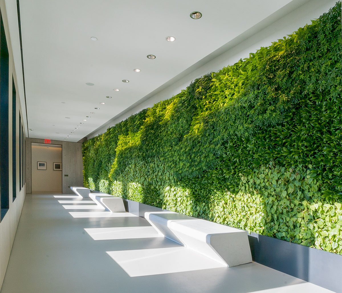 Green Wall Installation at One Manhattan Square