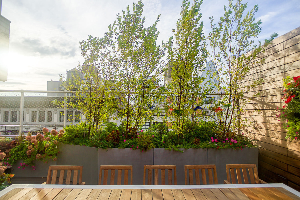 NYC Terrace Landscaping