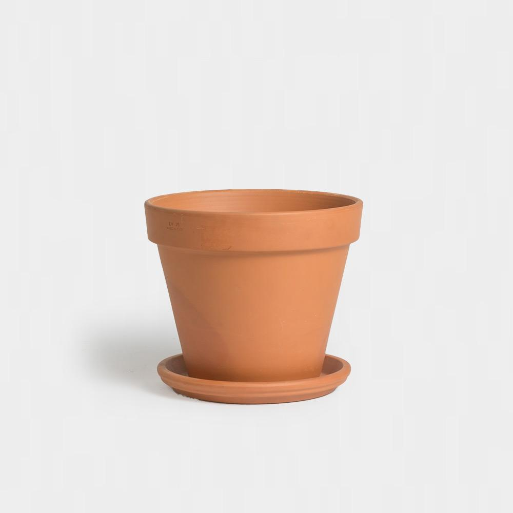 .Terracotta Pot and Saucer.: 16