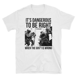 dangerous to be right v1 light t-shirt