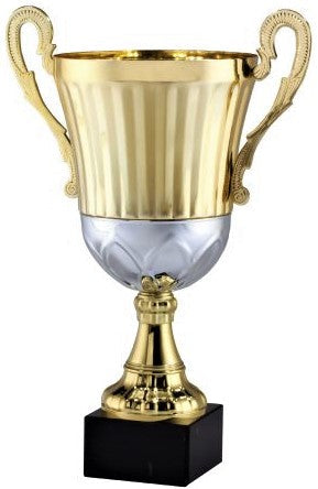 Gold/ Silver Trophy Cup
