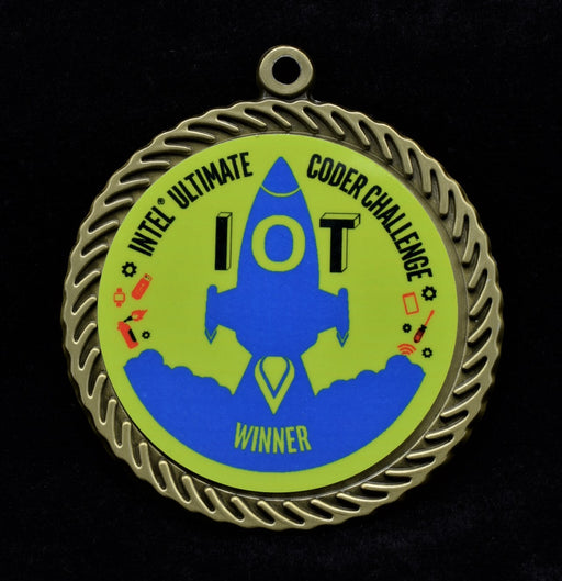 "Scallop  2"" Disc Insert Medal"