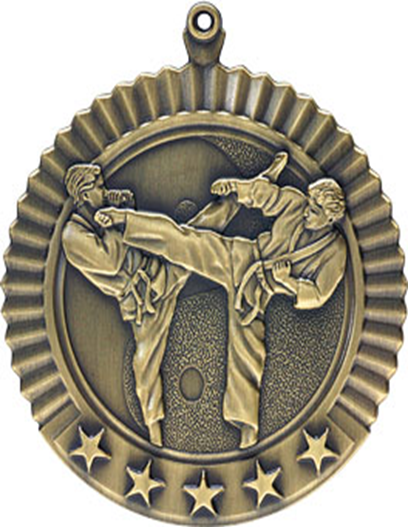 Star Medal Karate