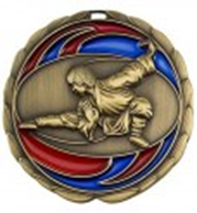 Color Epoxy Medallion Medal Karate
