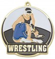 High Tech Medal Wrestling