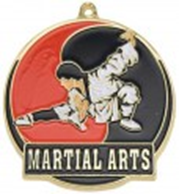 High Tech Medal Karate