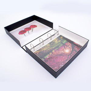 Premium D-Ring Binder Box