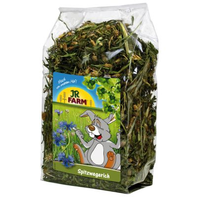 Jr Farm Tanchagem 100gr