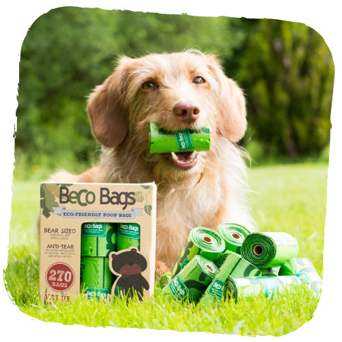 Beco Bags Eco Friendly Poop Bags