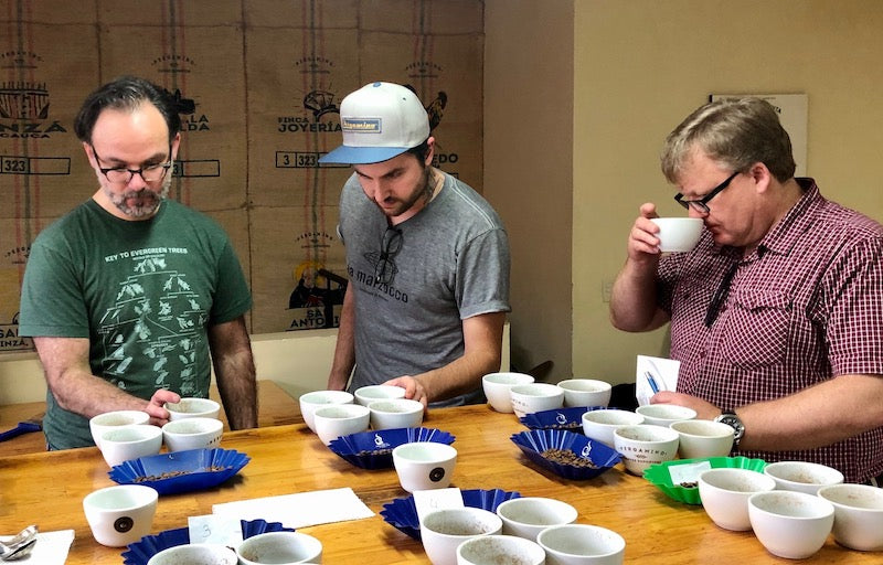 Cupping With Mercanta