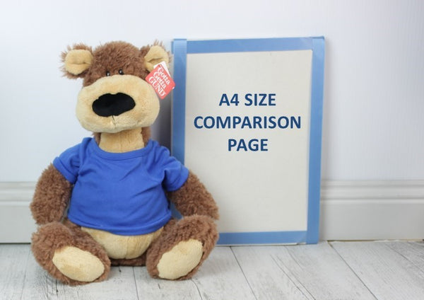 Personalised Teddy -Spenser w/ T-Shirt