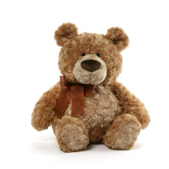 Personalised Teddy - Flynn w/Jumper -46cm