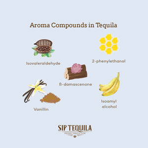 Aroma Compounds in Tequila
