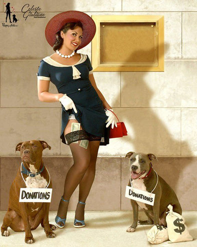 Donate Here | Pinups for Pitbulls | Various