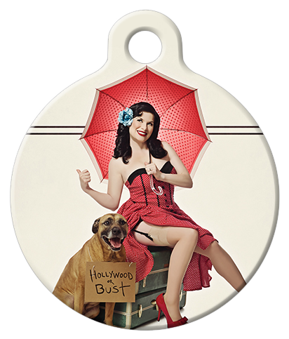 DOG TAG: Hollywood or Bust