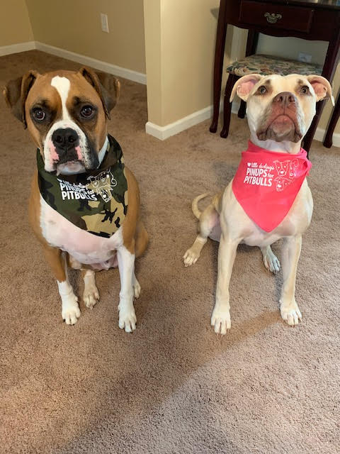 Dog Bandana with PFPB Logo