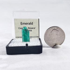 Emerald Thumbnail Specimen from Cosquez Mine, Boyaca. Colombia