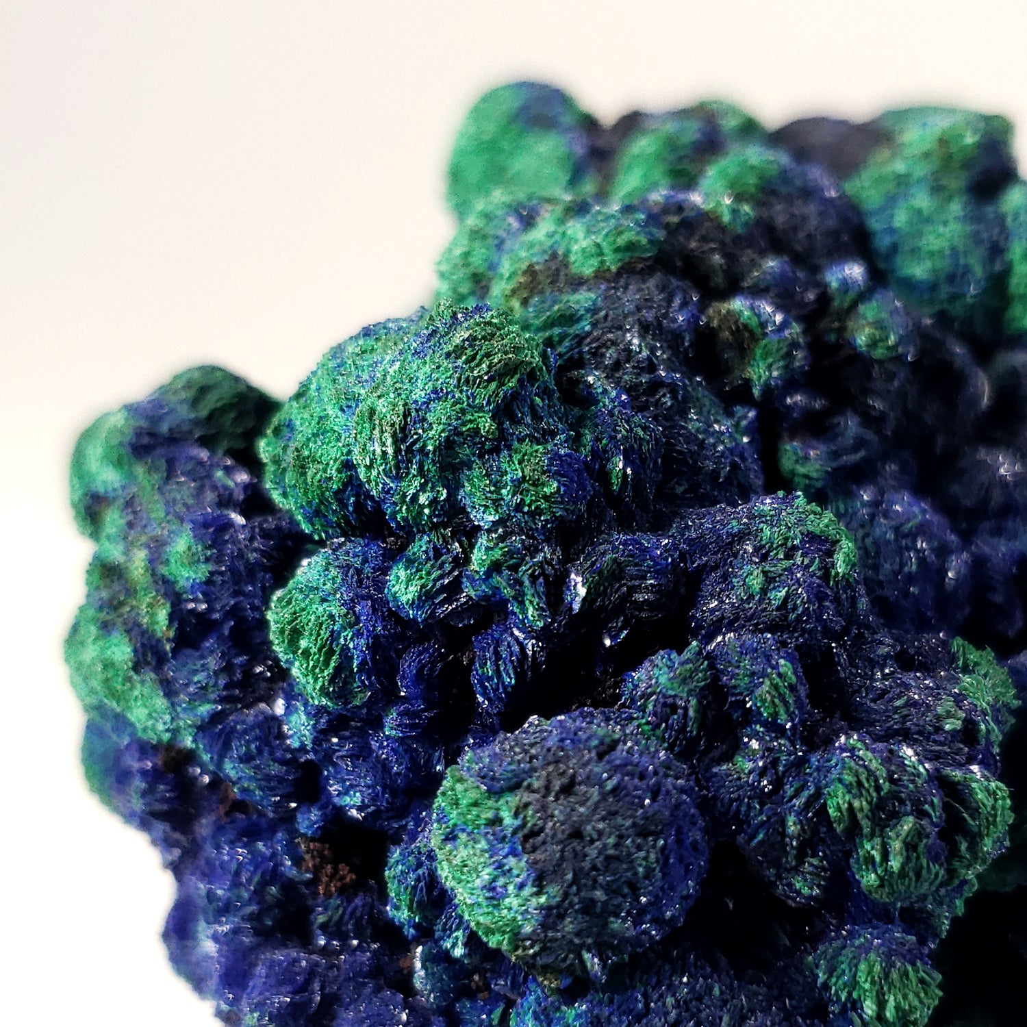 Botryoidal Malachite and Azurite from Bahia Brazil