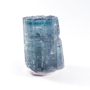 Terminated Bicolor Cruzeiro Tourmaline from Cruzeiro Mine, Minas Gerais, Brazil