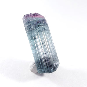 Terminated Bicolor Tourmaline from Cruzeiro Mine, Minas Gerais, Brazil