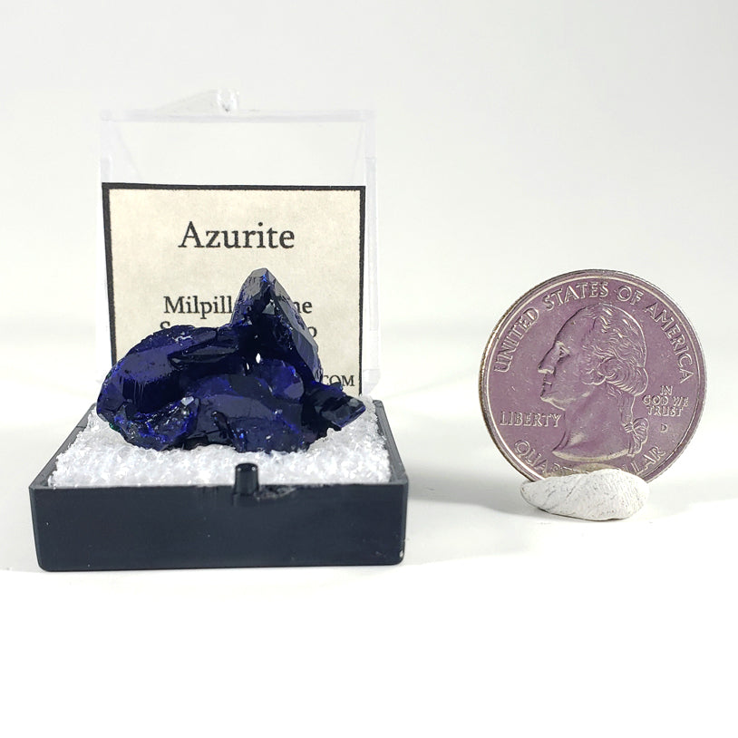 Azurite Crystal Thumbnail Specimen from Milpillas Mine, Sonora, Mexico