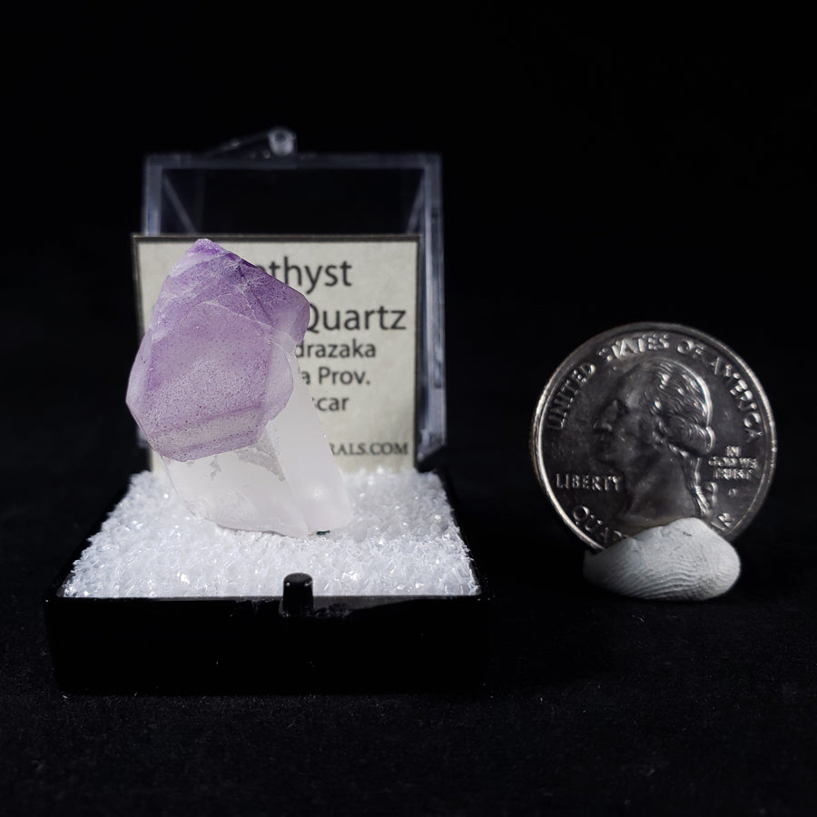 Amethyst Scale View with Quarter