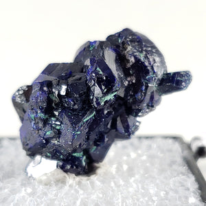 Azurite Cluster Thumbnail Specimen from Milpillas Mine, Mexico