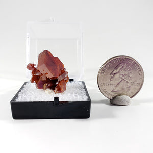Vanadinite Thumbnail Specimen from Mibladen, Morocco