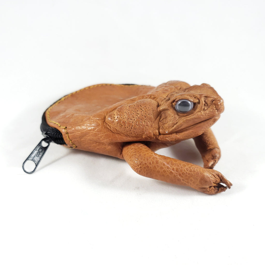 Taxidermy Cain Toad Coin Purse