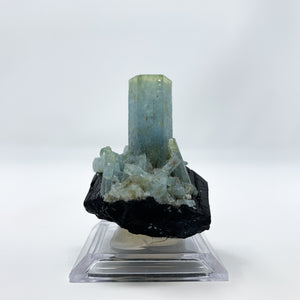 Aquamarine on Schorl from the Erongo Mountains, Namibia