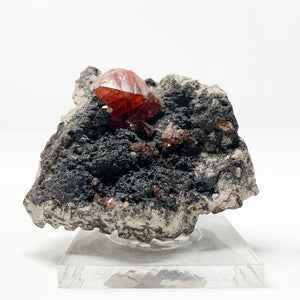 Rhodochrosite from the Uchucchacua Mine, Lima Dept. Peru.