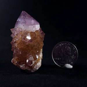 Amethyst and Citrine Cactus Quartz from Nkangala District, South Africa