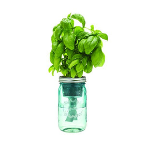 Kitchen Herb Kit – Three Self-watering Indoor Planters with Organic Basil, Organic Parsley, and Non-gmo Mint Seeds.