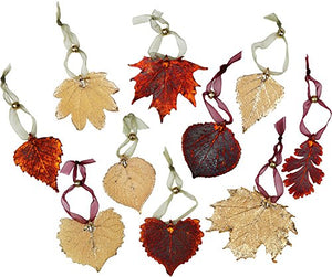 Curious Designs Leaf Ornament - Real Sugar Maple Leaves
