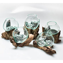 Load image into Gallery viewer, MyGift Small Natural Driftwood & Clear Molten Glass Bowl Plant Terrarium, Home Tabletop Decor Vase