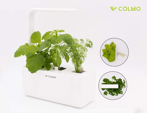 Indoor herb Garden kit with Spectrum LED hydroponic self Watering in-Home Smart Window Garden Fresh Herbs&Veggies Planter (White)