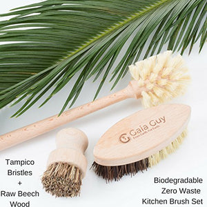 Wood and Tampico Bottle Brush - Pot Brush - Vegetable Brush Set - Zero Waste & Biodegradable Kitchen Brushes