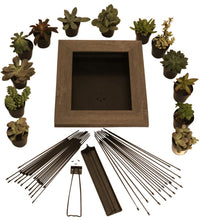 Load image into Gallery viewer, Portrait Gardens Wall Planter (8x10) - Instant Vertical Succulents Herbs Indoor Garden DIY Picture Cactus Plastic Ready to Hang Pin Plant Display Water