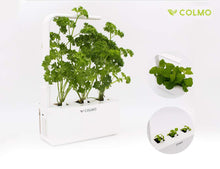 Load image into Gallery viewer, Indoor herb Garden kit with Spectrum LED hydroponic self Watering in-Home Smart Window Garden Fresh Herbs&Veggies Planter (White)