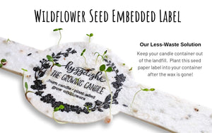 - The Growing Candle - Hate Tossing Empty Candles? Try Our Less-Waste Solution. Burn Candle. Plant Seed-Embedded Label. Grow Wildflowers! Clean Products For A Cleaner Environment. HLC-EMM-SAN