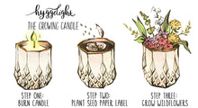 Load image into Gallery viewer, - The Growing Candle - Hate Tossing Empty Candles? Try Our Less-Waste Solution. Burn Candle. Plant Seed-Embedded Label. Grow Wildflowers! Clean Products For A Cleaner Environment. HLC-OLI-SAN