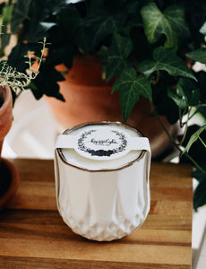 The Growing Candle - Hate Tossing Empty Candles? Try Our Less-Waste Solution. Burn Candle. Plant Seed-Embedded Label. Grow Wildflowers! Clean Products For A Cleaner Environment. HLC-AST-SAN