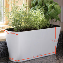 Load image into Gallery viewer, Aquaphoric Herb Garden Tub - Self Watering Passive Hydroponic Planter + Fiber Soil, Keeps Indoor Kitchen Herbs Fresh and Growing for Weeks on Your Home Windowsill. Compact, Attractive and Foolproof.